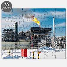 Natural gas liquefaction plant Puzzle