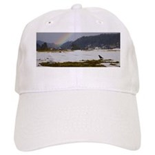 Winter birds and rainbow Baseball Cap