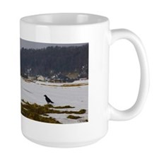 Winter birds and rainbow Mug