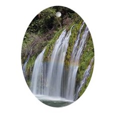 Waterfall and rainbow Oval Ornament