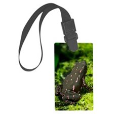 Poisonous toad Luggage Tag