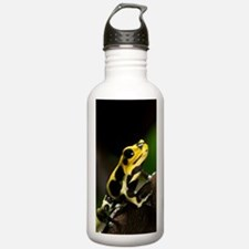 Poison arrow frog Water Bottle