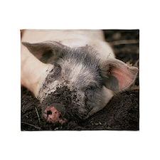 Piglet in mud Throw Blanket