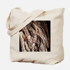 Petrified wood Tote Bag