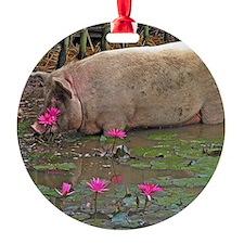 Pig drinking Ornament