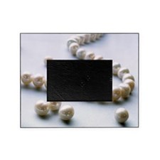 Pearl necklace Picture Frame
