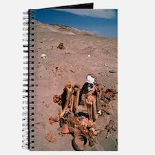 Peruvian mummy Journal