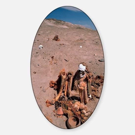 Peruvian mummy Sticker (Oval)