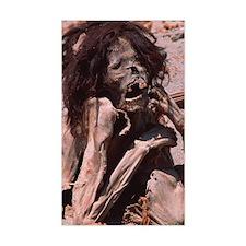 Peruvian mummy Decal