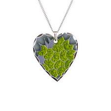 Pediastrum green algae, light Necklace