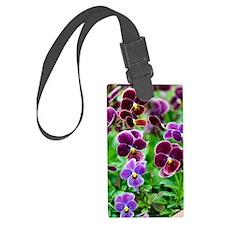 Pansy (Viola x wittrockiana) Luggage Tag