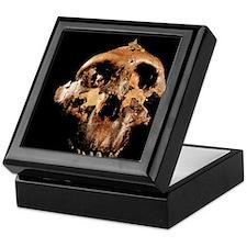 Paranthropus boisei skull Keepsake Box