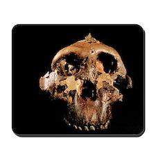 Paranthropus boisei skull Mousepad