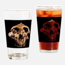 Paranthropus boisei skull Drinking Glass