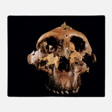 Paranthropus boisei skull Throw Blanket