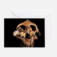 Paranthropus boisei skull Greeting Card