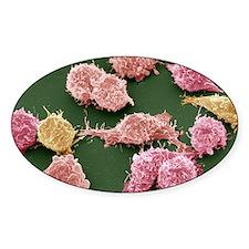 Cancer cells, SEM Decal