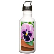 Pansy (Viola x wittroc Water Bottle