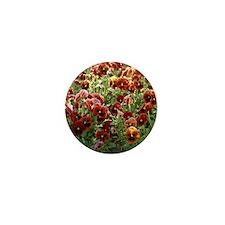 Pansies (Viola sp,) Mini Button
