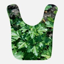 Organic parsley Bib