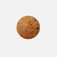 Oolitic limestone rock Mini Button