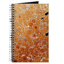 Oolitic limestone rock Journal