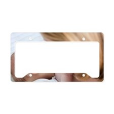 Breastfeeding License Plate Holder