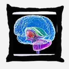 Brain anatomy, artwork Throw Pillow