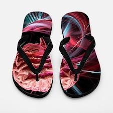 Brain research, conceptual artwork Flip Flops