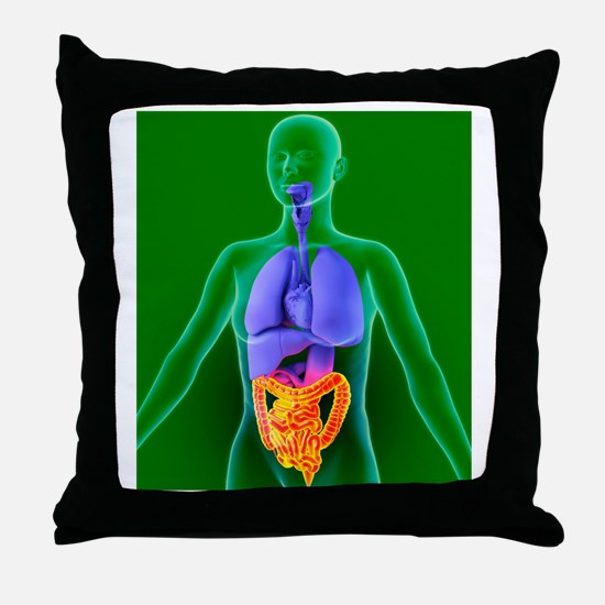 Bowel, artwork Throw Pillow