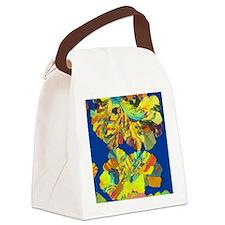 Oestradiol, female sex hormone Canvas Lunch Bag