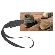 Olduwan stone tools Luggage Tag