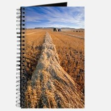 Oat harvest Journal
