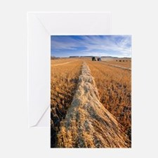 Oat harvest Greeting Card