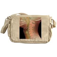 Normal neck, X-ray Messenger Bag