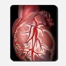 Normal human heart, artwork Mousepad