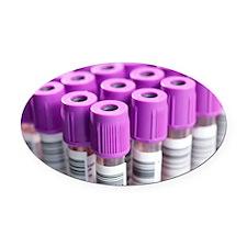 Blood samples Oval Car Magnet