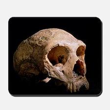 Neanderthal skull Mousepad