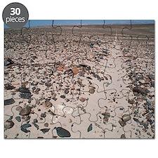 Nazca line Puzzle