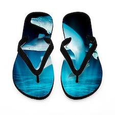 Beluga whales, artwork Flip Flops