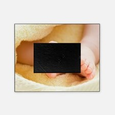 Baby's feet Picture Frame