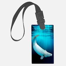 Beluga whale, artwork Luggage Tag