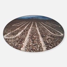 Nazca lines Decal