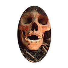 Mummified skull Oval Car Magnet