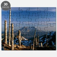 Mount St Helens volcano Puzzle