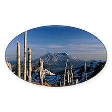 Mount St Helens volcano Decal