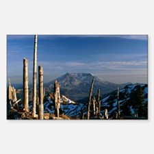 Mount St Helens volcano Sticker (Rectangle)