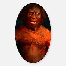 Model of a male Homo erectus man Decal