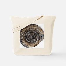 Ammonite fossil Tote Bag