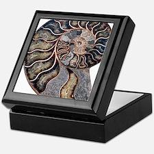 Ammonite Keepsake Box